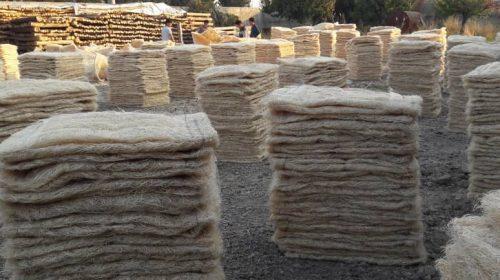 تولیدی گل ایران
