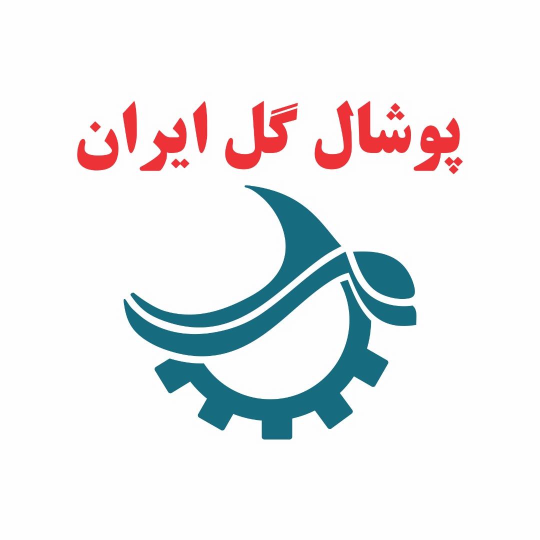 گل ایران